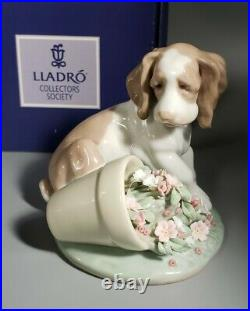 1998 LLADRO Figurine #7672 It Wasn't Me Collectors Society Dog withFlowers / box