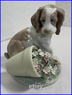LLADRO 7672 It Wasn't Me Collectors Society Dog Flowers & Original Box Retired