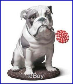 LLADRO Large dog 01009234 BULLDOG WITH LOLLIPOP 9234 New in Box