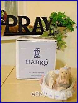 LLADRO OUR COZY HOME # 6469 YORKSHIRES DOGS YORKIE PUPPY MINT withBOX FAST SHIP