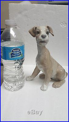 Lladro Setter Dog Statue Figurine Made In Spain