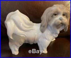 Lladro 4642 Dog Retired! Mint Condition! No Box! Glossy Finish! L@@K