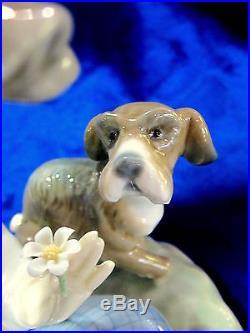 Lladro #5450 I Hope She Does Brand Nib Rare Boy Dog Love $175 Off Free Shipping