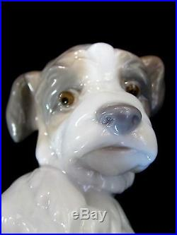 Lladro #6211 New Friend Brand New In Box Puppy With Snail Dog Animals