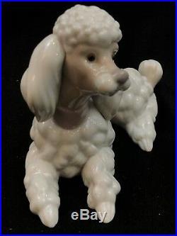 Lladro 6337 POODLE LLADRÓ DOG Porcelain Figurine