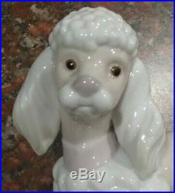 Lladro 6337 Poodle puppy dog laying down with pink collar bow MWOB, RV$340