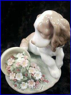 Lladro 7672 It Wasn't Me Puppy With Overturned Flowers Retired MIB