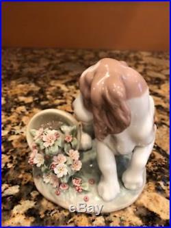 Lladro 7672 It Wasnt Me! Dog Flower Pot Porcelain Figurine