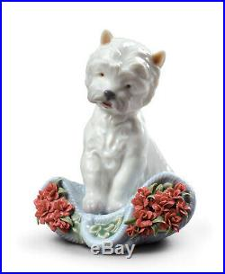 Lladro #8065 Playful Character Dog Figurine Brand Nib Carnations Cute Save$ F/sh