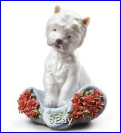 Lladro 8065 Playful character (carnations) Dog with Flowers 01008065 New