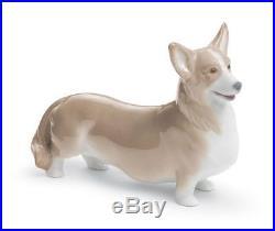 Lladro 8339 Welsh Corgi Pembroke Dog Animal Figurine 01008339 New