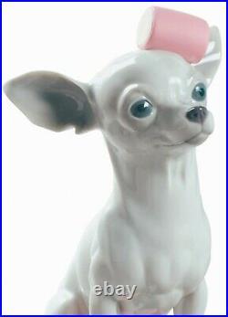 Lladro Dog CHIHUAHUA WITH MARSHMALLOWS 01009191