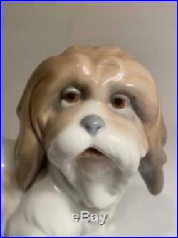 Lladro Dog Lhasa Apso Figurine 4642 Glossy Porcelain No Box