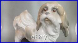 Lladro Dog Lhasa Apso Tibetan Terrier 4642 Figurine
