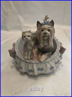 Lladro Figurine 6469 Our Cozy Home Yorkshire Terrier Dogs in Basket Bed with Box