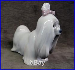 Lladro Figurine, Maltese, 1008368, Mib, Dog