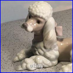 Lladro Figurine Vintage Porcelain Statue 6337 Poodle Puppy Dog Laying Down Coat