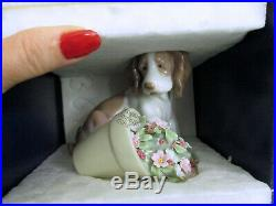 Lladro It Wasn't Me 7672 Dog With Flower Pot 1998 Club New In Box Vintage