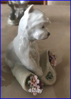 Lladro Playful Character Dog #8207 Mint Condition With Box & Papers