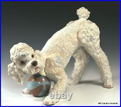 Lladro Playful Poodle #6557 Large Dog Playing With Ball Msrp $760 Mint