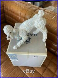 Lladro Playful Poodle Dog Figurine withBox #6557 with original box Excellent