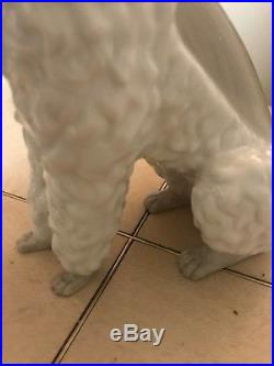 Lladro Poodle # 325.13 Old & Very Rare Dog Mint Condition Fast Shipping! $2800