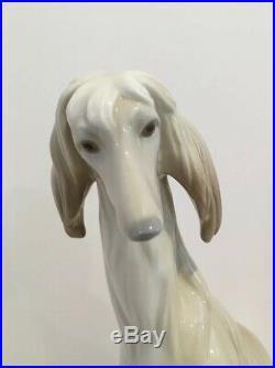 Lladro Porcelain Afghan Hound Dog #1069 Retired EUC No Box
