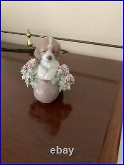Lladro Puppy Dog In Flower Basket