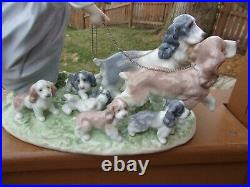Lladro Puppy Parade No. 6784 Girl Walking Dogs with Puppies Figurine Exc Cond