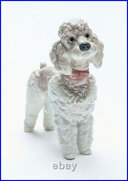 Lladro Standing Poodle Dog Glazed Porcelain By Artist Antonio Ballester