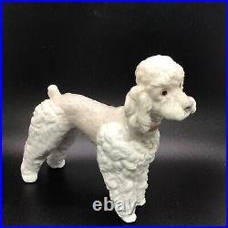 Lladro Standing Poodle Dog (wooly Dog) Glazed Porcelain Figurine