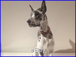 Lladro Very Large Rare Great Dane Dog Puppy Gloss Finish Figurine 6558