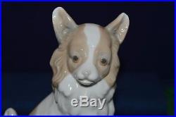 Lovely Rare Nao By Lladro''Pomeranian'' Dog Sitting Figurine USC RD8016