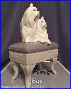 Mint in BoxRare & Stunning Lladro Looking Pretty (6682 Dogs)