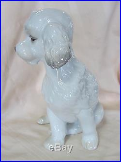 Nao By Lladro Sweet Poodle Brand New In Box #1655 Dog White Large Save$ Free Sh