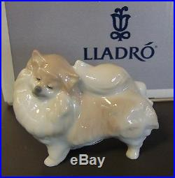New Lladro #8338 Pomeranian Dog Brand New In Box Cute Small Save$$ Free Shipping