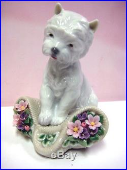 Playful Character Dog By Lladro Porcelain #8207