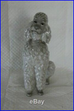 Rare Large 23cm Early Lladro 325 Gloss Poodle Dog Figure