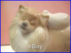 Retired Pomeranian Puppy Dog Porcelain By Lladro 8338