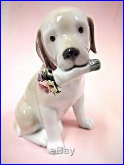 This Bouquet Is For You Dog Flowers Figurine 2016 By Lladro Porcelain #9256